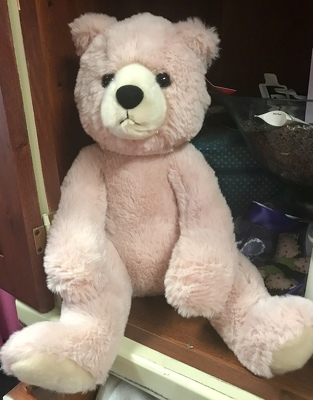 Large Plush Bear from Kelley's Florist in Lake Placid, FL